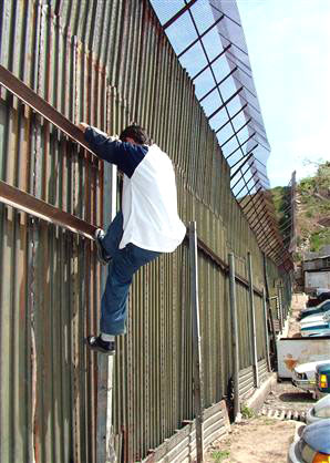 Trust-in-Government Deficit: Only 5% of Voters Believe Immigration Amnesty Will Include Genuine Border Enforcement